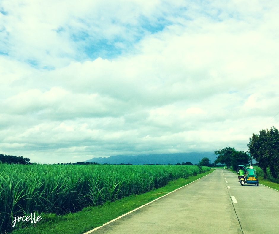 silay1